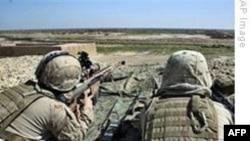 Afganistan'daki Operasyonda Çatışmalar Hafifledi