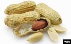 Sayangnya, bagi Anda yang sudah terbiasa makan sehat, makan kacang tidak akan banyak berpengaruh.