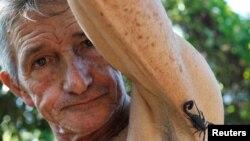 پیپی کاساناس وایي چې د لړم زهر یې دردونه له منځه وړي