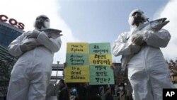 Người biểu tình ôm cá chết để làm nổi bật ảnh hưởng của ô nhiễm phóng xạ của các đại dương trong cuộc biểu tình chống Hội nghị thượng đỉnh an toàn hạt nhân ở Seoul, Hàn Quốc, ngày 25/3/2012