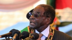 Report on Mugabe Succession Debate Filed By Loidham Moyo