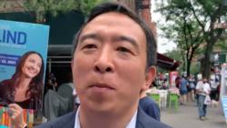 紐約市長初選結束 楊安澤承認落敗