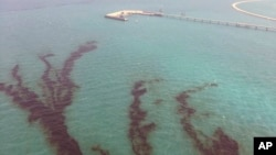 This Aug. 12, 2017 photo released by Kuwait Environment Public Authority, shows an oil spill near Kuwait's southern Ras al-Zour in Persian Gulf waters.
