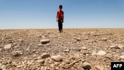 FILE - In this file photo a boy walks through a dried up agricultural field in the Saadiya area, north of Diyala in eastern Iraq on June 24, 2021