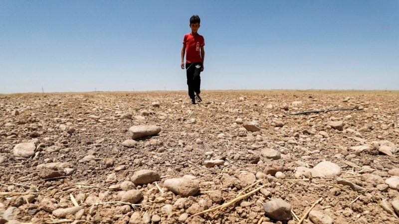 Radical Action Needed to Prevent Irreversible Climate Change, Scientists Say   ...