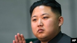 朝鲜准接班人金正恩(资料照片)