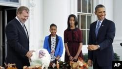 奧巴馬總統與他的兩個女兒11月23日在白宮赦免火雞 'Liberty'