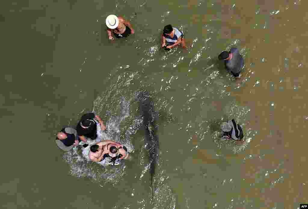 An aerial view shows people using their phones and cameras to film a shark swimming past in the shallow Mediterranean Sea water off the Israeli coastal town of Hadera north of Tel Aviv.