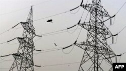 Birds sit on high voltage electricity towers on the outskirts of New Delhi (April 2010 file photo) India will need $1.2 trillion in capital investment by 2030 to upgrade and expand the electric grid, water, communications, and transportation infrastructu