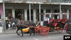 New Orleans vẫn còn trong giai đoạn phục hồi sau trận bão Katrina