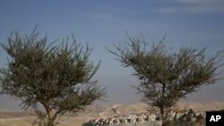 东耶路撒冷附近约旦河西岸犹太马阿莱杜米姆定居点E1 计划