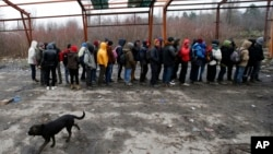 Migranti na granici Srbije i Hrvatske (arhivska fotografija)