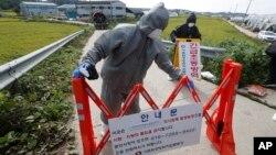 아프리카돼지열병이 발생한 한국 경기도 파주시의 돼지농장 인근에서 검역관들이 바리케이드를 설치하고 있다.