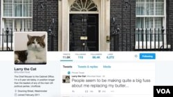 A screen shot of Larry the Cat's Twitter account.