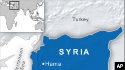 Rights Activists Say 25 Syrians Killed in Attacks