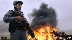 حامد کرزی عملیات مشترک قوای امریکایی و روسی علیه مواد مخدر را تقبیح نمود