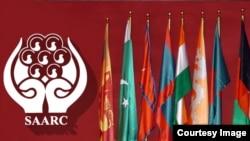پاکستان اور بھارت سارک ممالک کی تنظیم کے رکن بھی ہیں۔