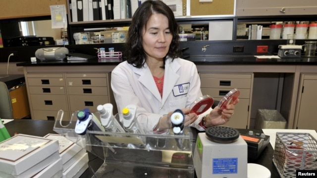 Dr. Christine Lee, an infectious disease physician, poses in a lab at St. Joseph's Healthcare hospital at McMaster University where they're looking at transplanting healthy human feces, in Hamilton, Ontario, November 22, 2012.