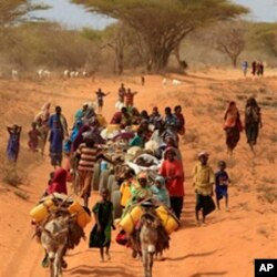 Somalis fleeing hunger in their drought-stricken nation walk along the main road leading from the Somalian border to the refugee camps around Dadaab, Kenya