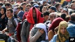 2015年9月13日匈牙利和奥地利边界: 难民等待前往奥地利尼克尔斯多夫的公车