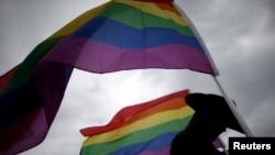代表LGBT群体的彩虹旗帜