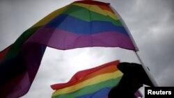 在阿肯色州小石城舉行的一個國際同性戀會議上,一名婦女手舉象征LGBT權益的彩虹旗。(資料照片)