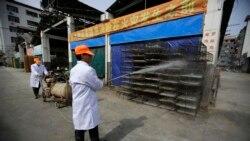 တ႐ုတ္ႏုိင္ငံ ဟူနန္ျပည္နယ္မွာ H5N1 ငွက္တုပ္ေကြး ကူးစက္ပ်ံ႕ႏွံ႔