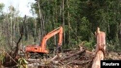 Sebanyak 207 aktivis lingkungan telah ditangkap aparat keamanan dan diproses hukum karena telah menyelidiki dugaan korupsi di sektor sumber daya alam. (Foto: Dok)