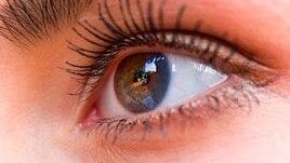 Penderita diabetes rawan terhadap kebutaan yang disebabkan oleh kondisi yang disebut diabetic retinopathy.