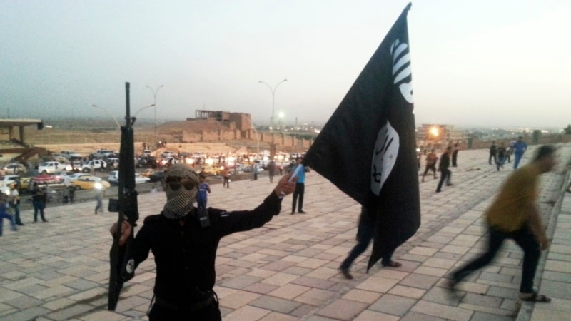 ISIL Staged 'Mass Executions' in Iraq, Rights Group Says