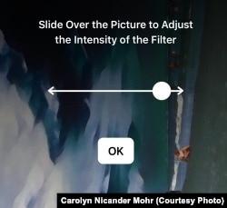 Prisma Adjust Filter