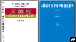 王天成新書《大轉型-中國民主化戰略研究框架》及張博樹新書《中國憲政改革可行性研究報告》
