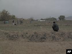修建灌溉系统,发展畜牧业,教育农民,种植高价值作物