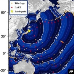 NOAA map shows estimated tsunami travel times after Japan's earthquake.