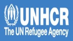 ACNUR quer que Angola implemente lei de refugiados - 1:17