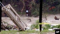 2015年5月26日得克萨斯州: 布兰科河一天前洪水过后的垃圾