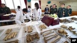 16일 경기도 파주시 중국군 유해 임시감식소에서 열린 입관식에서 국방부 유해발굴단원들이 유해를 입관하고 있다.