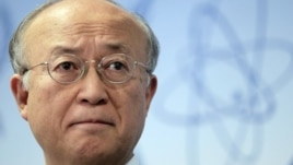 International Atomic Energy Agency (IAEA) Yukiya Amano
