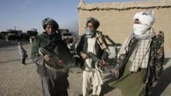 شورشیان طالبان