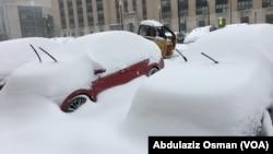 Washington Snowfall