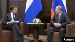 Russia's President Vladimir Putin (R) meets with Dutch Prime Minister Mark Rutte in Sochi, Feb. 7, 2014.