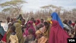 Kekeringan dan kekurangan pangan akibat kemarau panjang di kawasan Tanduk Afrika memaksa ribuan warga mengungsi (1/8). PBB menyerukan menyerukan pengelolaan air dan pangan yang lebih baik di dunia.