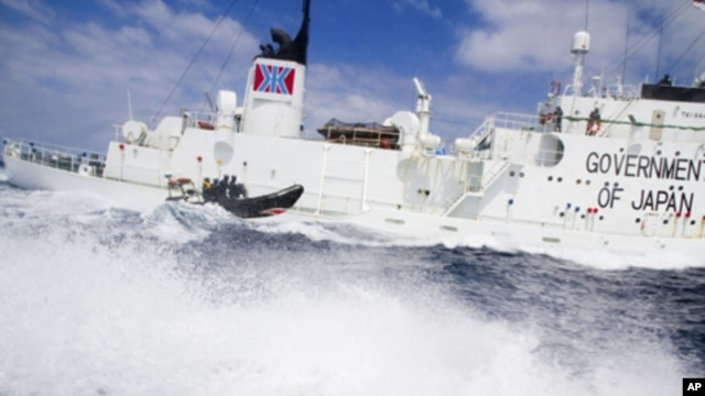 A small boat from the Sea Shepherd vessel, Steve Irwin, makes a reconnaissance trip past the Japanese whaling ship the Shonan Maru #2 near Freemantle in this handout picture released to Reuters on January 8, 2012.