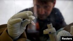 Seorang ilmuwan memeriksa sampel darah pasien ebola dalam laboratorium berjalan di Gueckedou, Guinea (foto: dok).