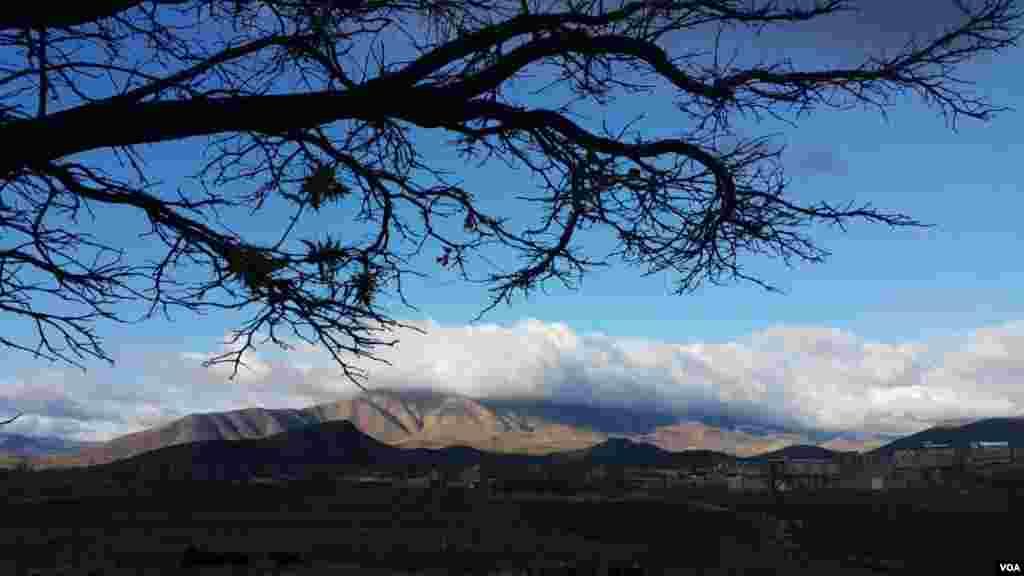 کوه بزآو در شهرستان کنگاور عکس: (ارسالی شما)
