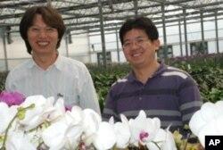台灣蘭花產銷發展協會秘書長林豐沛(左)與副秘書長曾俊弼