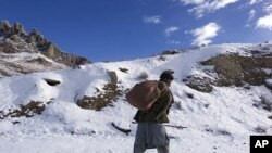 Provinsi Paktia di Afghanistan, yang berbatasan dengan Pakistan, dikenal sebagai kubu Taliban dan jaringan Haqqani yang terkait al-Qaida (foto: dok).