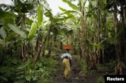 A Congolese woman carries her baby and personal belongings through a banana plantation near the town of Rangira, affected by recent fighting between government forces and rebels around North Kivu in eastern Democratic Republic of Congo