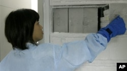 Ilmuwan mendapatkan sejumlah petunjuk vaksin AIDS bisa memberi perlindungan (foto: dok.)