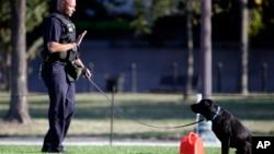 一名火警调查员和一只警犬在华盛顿国家大草坪的自焚现场调查。消防官员说,自焚受伤的男子被直升机送往医院。(2013年10月4日)